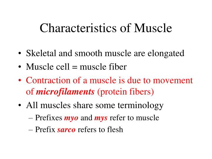 Characteristics of Muscle