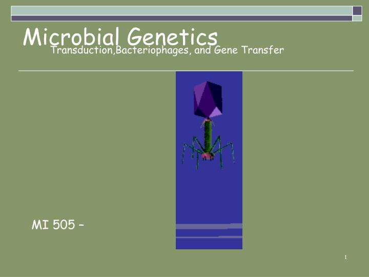 Transduction,Bacteriophages, and Gene Transfer