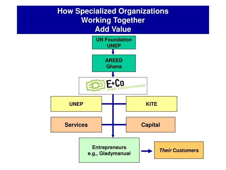 How Specialized Organizations