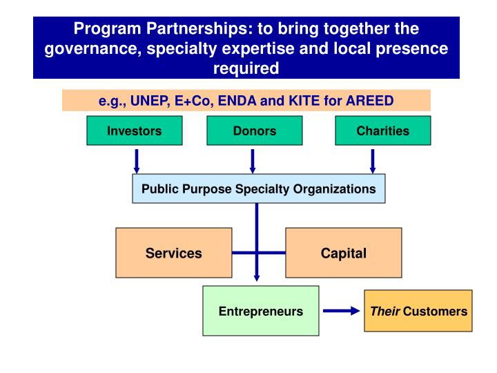 Program Partnerships: to bring together the governance, specialty expertise and local presence required