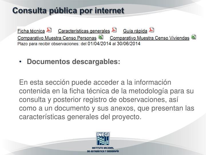 Consulta pública por internet
