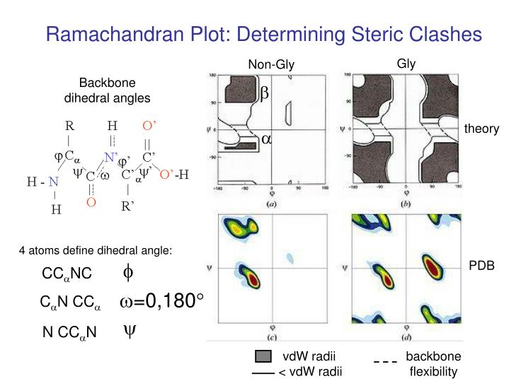 Ramachandran Plot: Determining Steric Clashes
