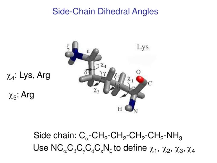 Side-Chain Dihedral Angles