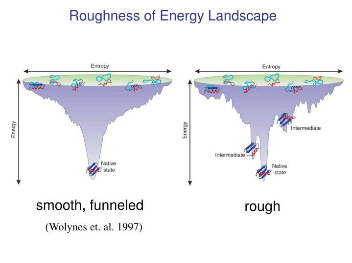 Roughness of Energy Landscape
