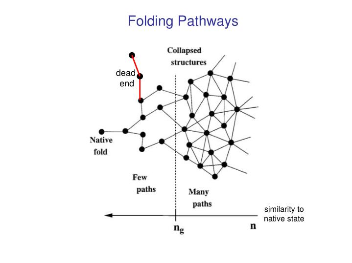 Folding Pathways