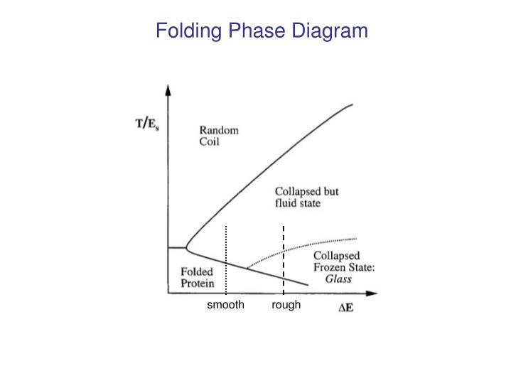 Folding Phase Diagram