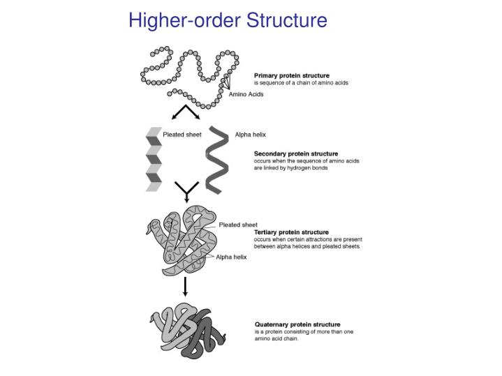 Higher-order Structure