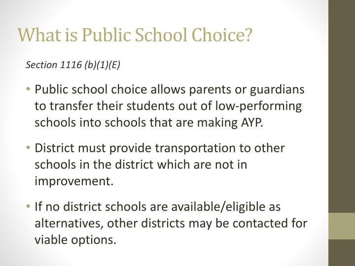 What is Public School Choice?