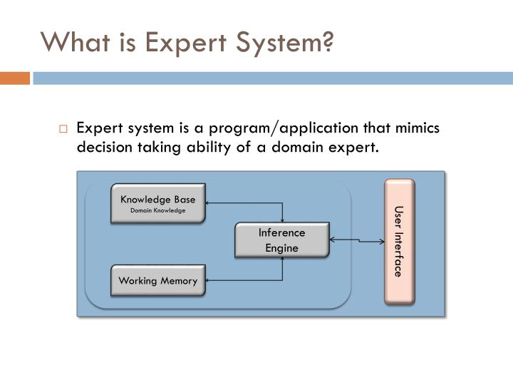 What is expert system