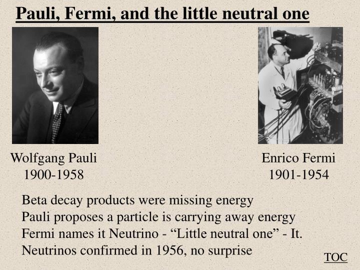 Pauli, Fermi, and the little neutral one