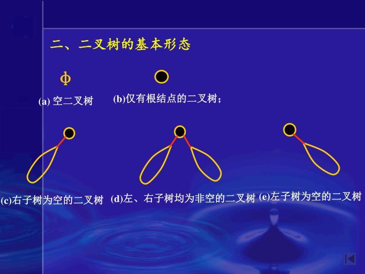 二、二叉树的基本形态