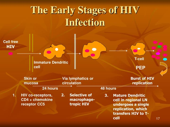The Early Stages of HIV Infection