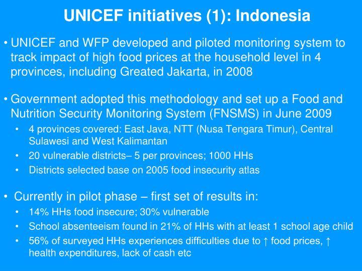 UNICEF initiatives (1): Indonesia