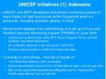 unicef initiatives 1 indonesia