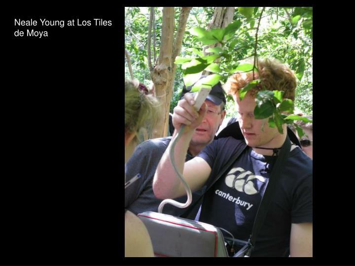 Neale Young at Los Tiles de Moya