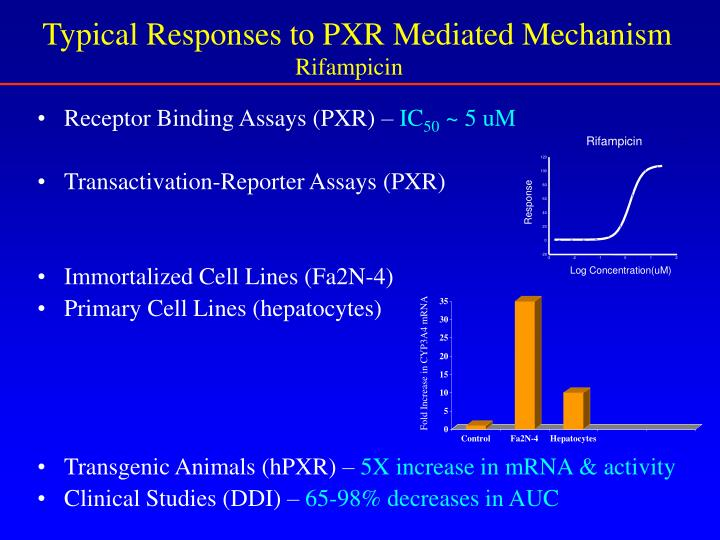 Receptor Binding Assays (PXR) –
