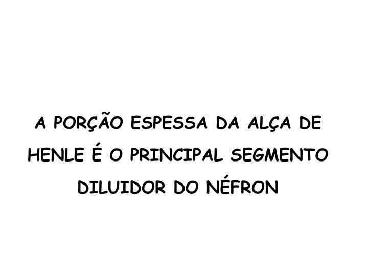 A PORÇÃO ESPESSA DA ALÇA DE HENLE É O PRINCIPAL SEGMENTO DILUIDOR DO NÉFRON