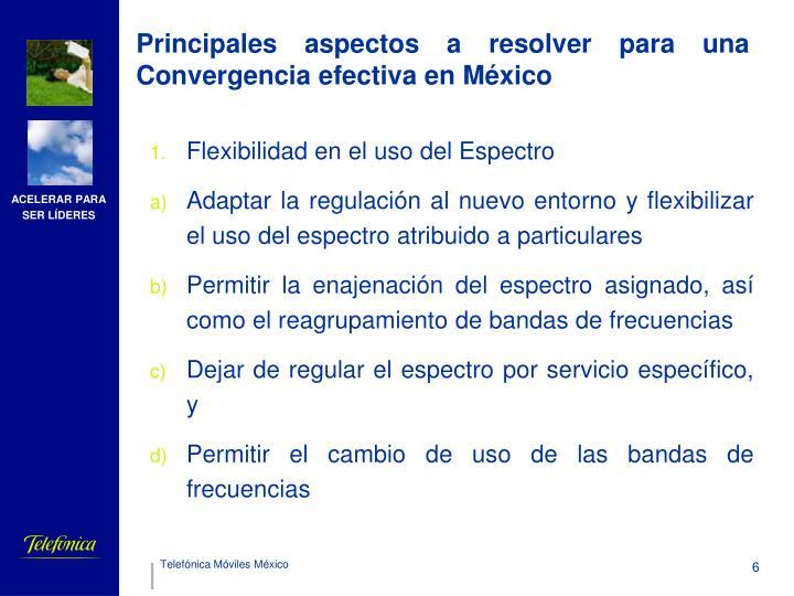 Principales aspectos a resolver para una Convergencia efectiva en México