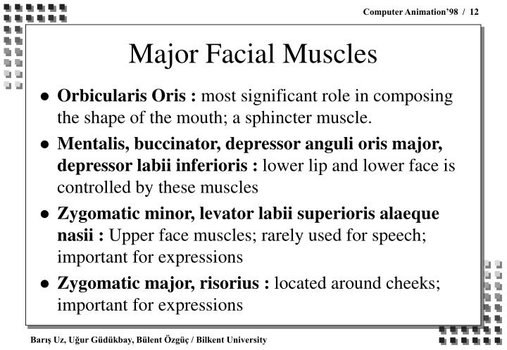 Major Facial Muscles