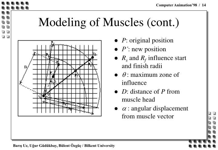 Modeling of Muscles (cont.)