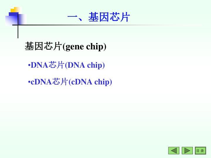 一、基因芯片