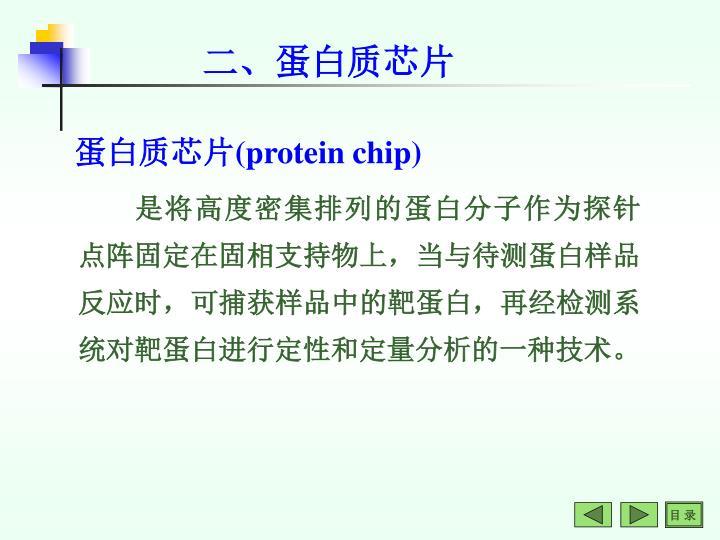 二、蛋白质芯片