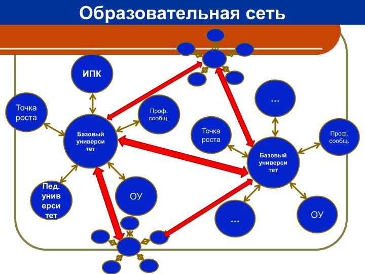 Образовательная сеть