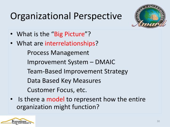 Organizational Perspective