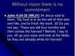 without vision there is no commitment3