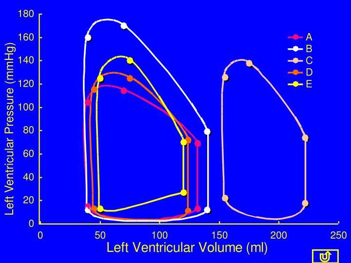 Left Ventricular Pressure (mmHg)