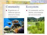 community ecosystem