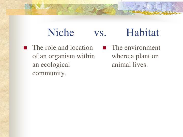 Niche       vs.       Habitat