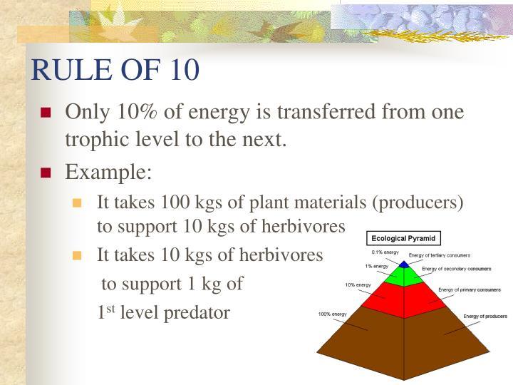 RULE OF 10