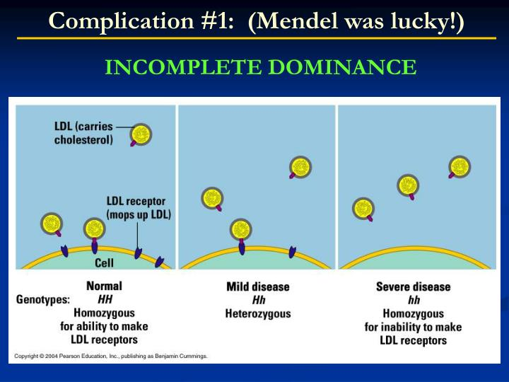 Complication #1:  (Mendel was lucky!)