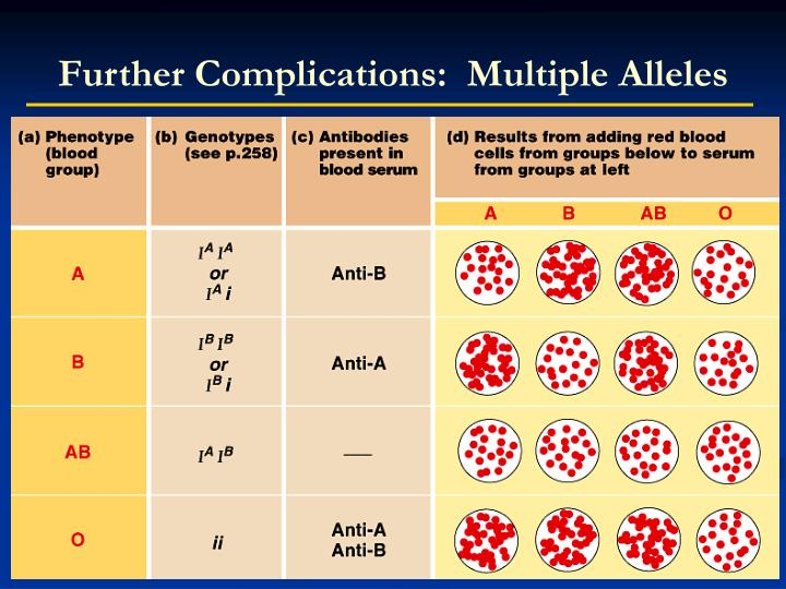 Further Complications:  Multiple Alleles