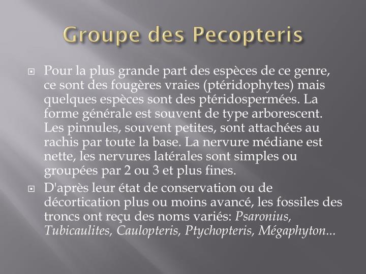 Groupe des