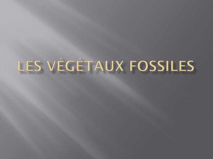 Les Végétaux Fossiles