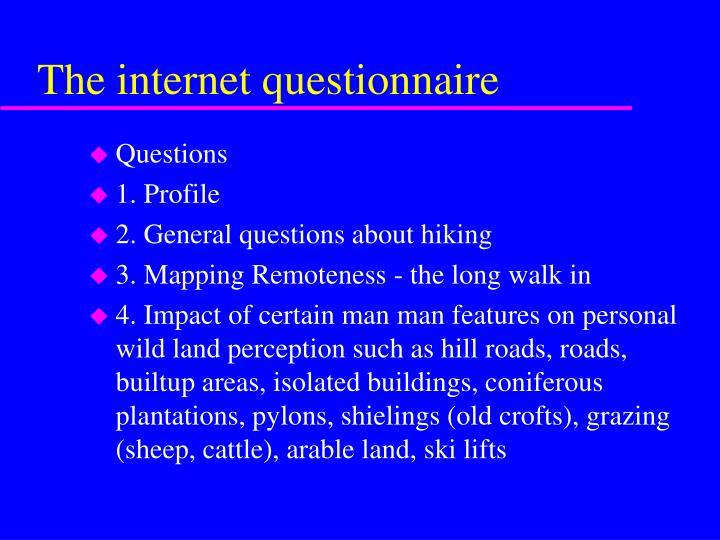 The internet questionnaire