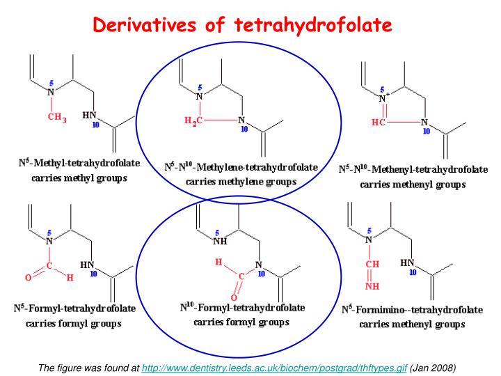 Derivatives of tetrahydrofolate