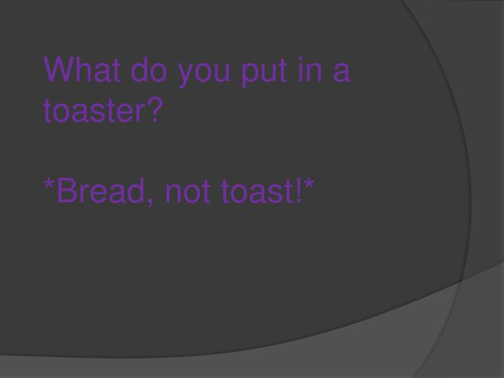 What do you put in a toaster?