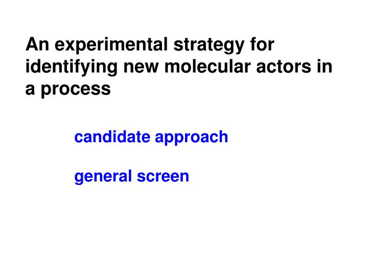 An experimental strategy for identifying new molecular actors in a process