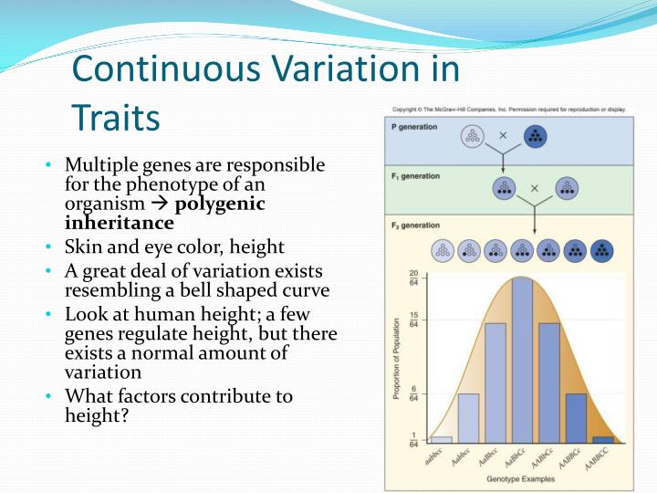 Continuous Variation in Traits