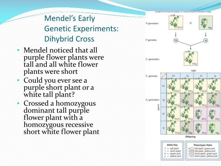 Mendel's Early