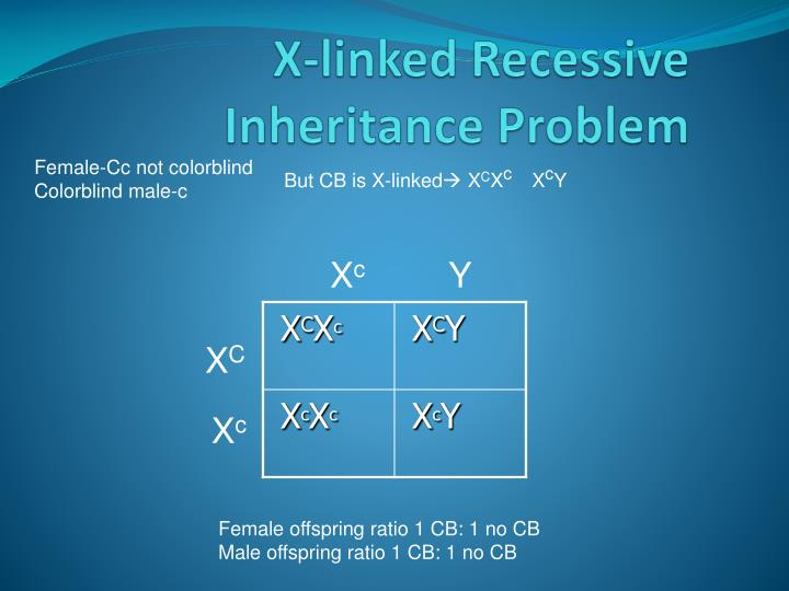 X-linked Recessive Inheritance Problem