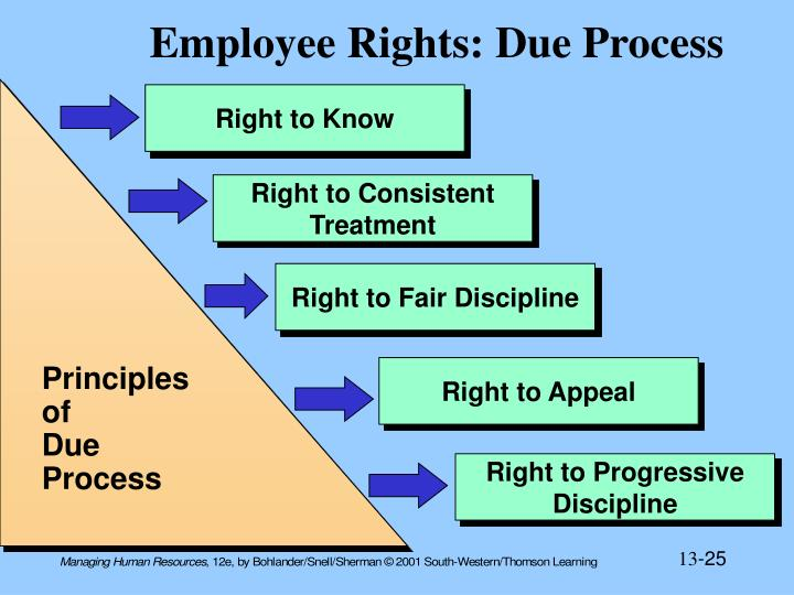Employee Rights: Due Process