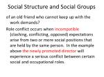 social structure and social groups10