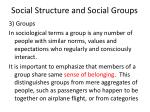 social structure and social groups12