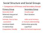 social structure and social groups16