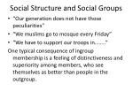 social structure and social groups18
