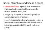 social structure and social groups19
